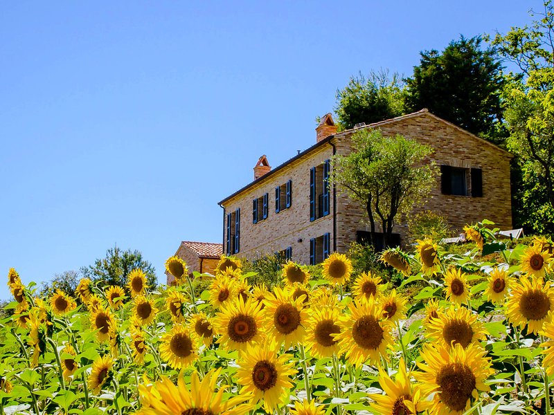 Elegant and luxurious villa with private pool, spacious garden and breathtaking, holiday rental in Ostra Vetere