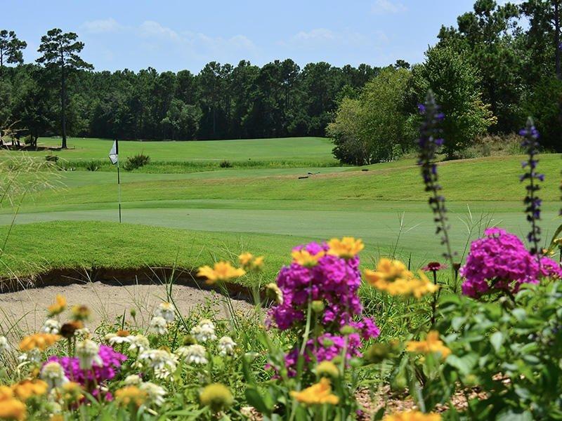 Field,Outdoors,Golf Course,Flower,Grass