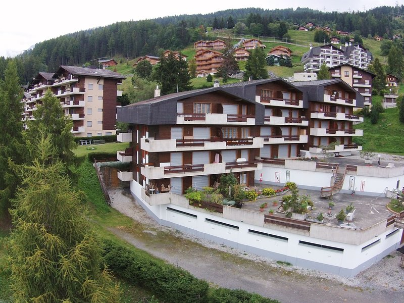 Apartment only approx. 60m from the ski lift., holiday rental in Riddes