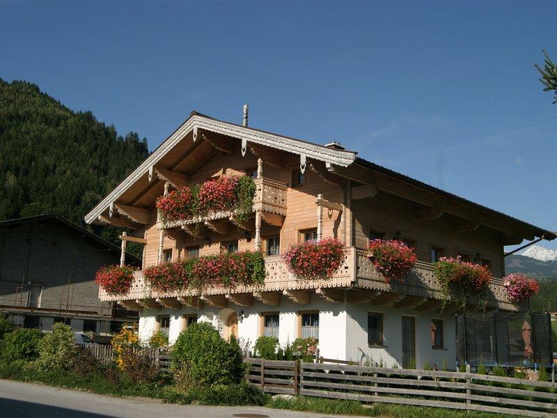 Modern Apartment in Mühlbach near Ski Area Kirchberg, holiday rental in Bicheln