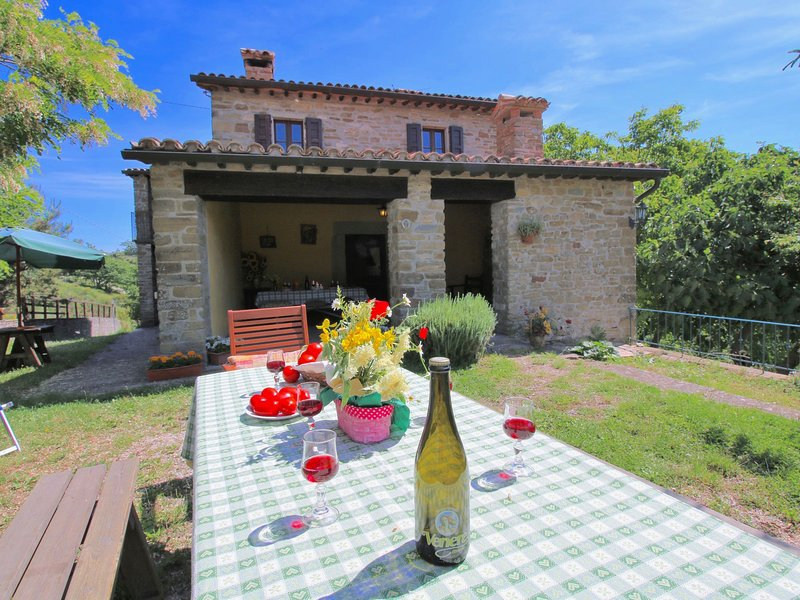 Farmhouse in the mountains, swimming pool, small craft brewery, holiday rental in Molino Abbadia