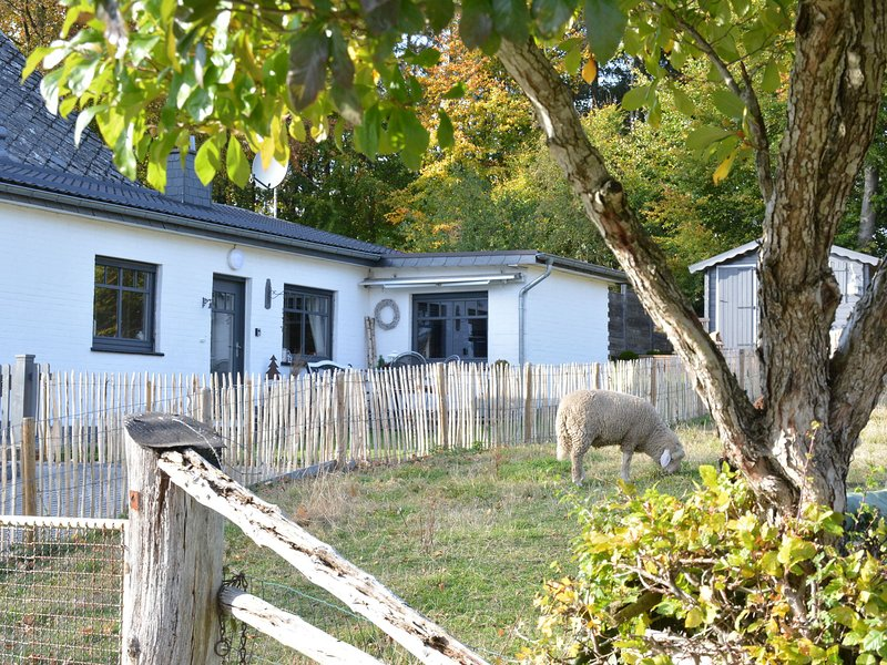 Charming cottage decorated with care,beautiful terraces,small village very quiet, holiday rental in Wirtzfeld