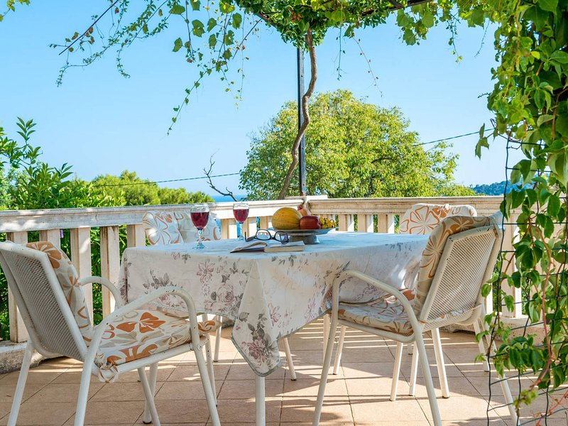 Quaint Mansion with Terrace in Dubrovnik, vacation rental in Gornji Brgat