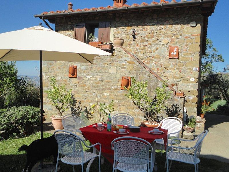 Farmhouse in Castelfranco di Sopra with Swimming Pool, aluguéis de temporada em La Lama