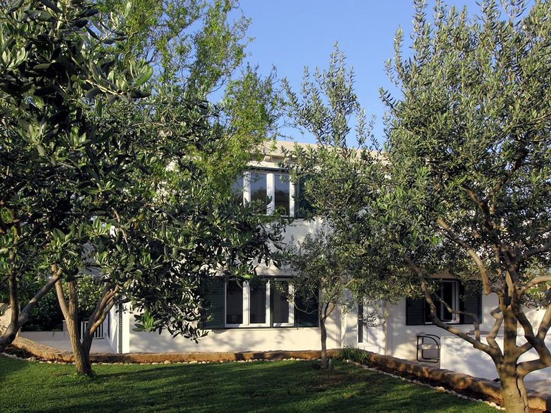 New apartment surrounded by olive groves, near Dubrovnik airport, free WI-FI, holiday rental in Mocici