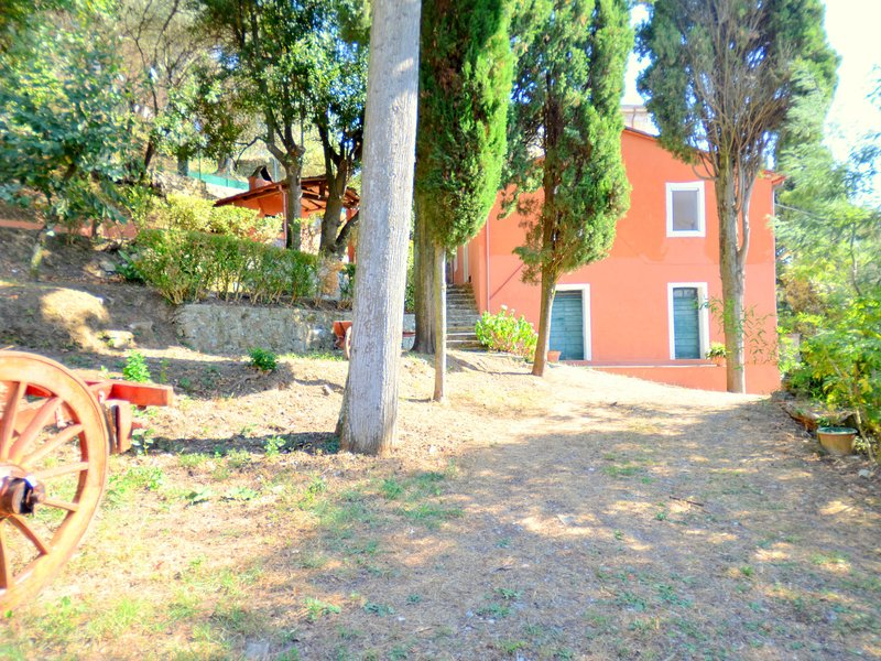 House overlooking the lake, in a hilly position, vacation rental in Massaciuccoli