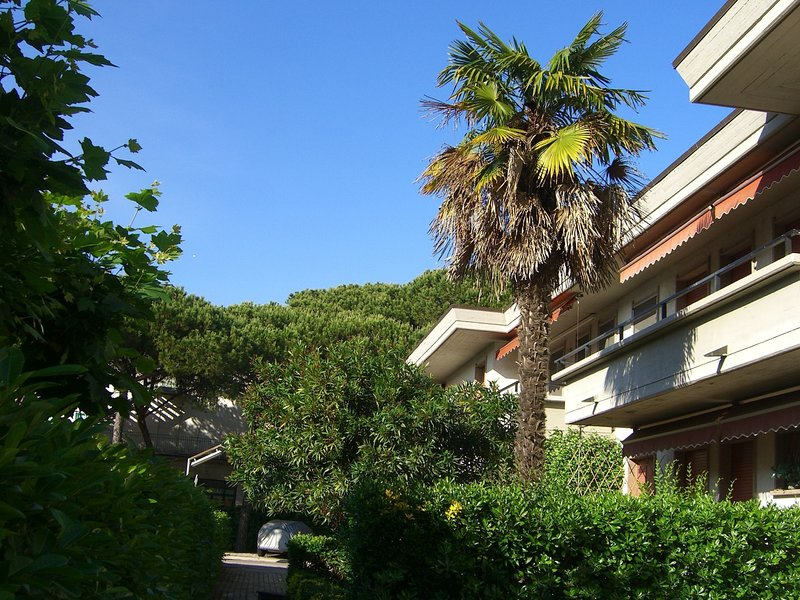 Cozy appartment in Marina di Massa, just 500m from the sea and from the beach, holiday rental in Avenza