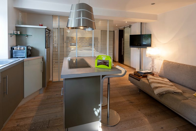 Beautiful studio 2p 200m from Lake Annecy., vacation rental in Talloires