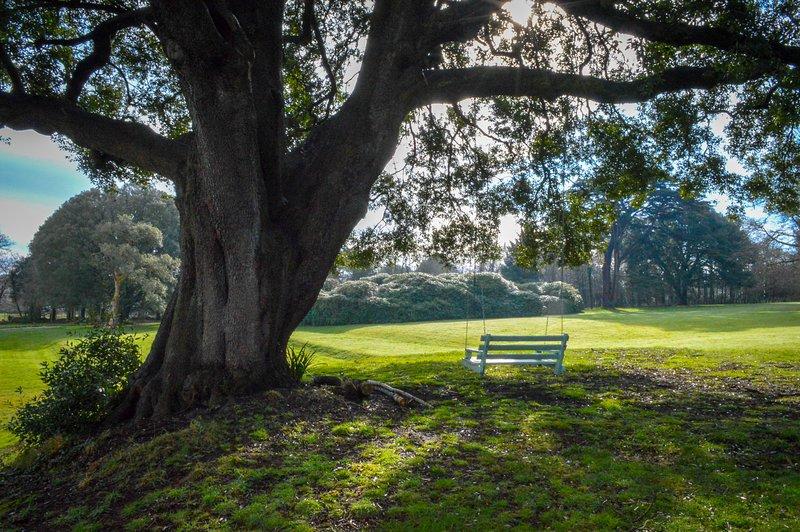 Giardini della Moreton House, affacciati sui prati meridionali