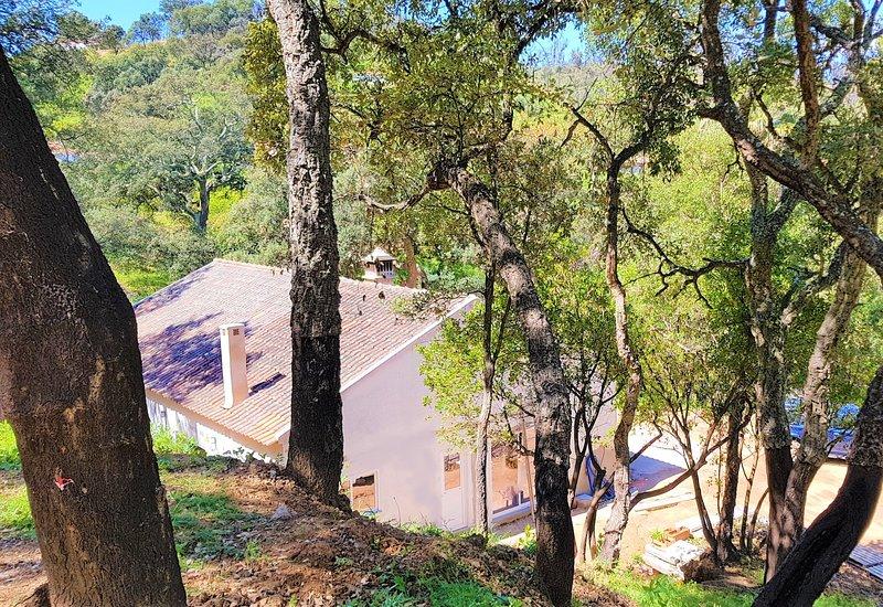 Quinta da Coruja Monchique, tranquil rural villa, casa vacanza a Monchique