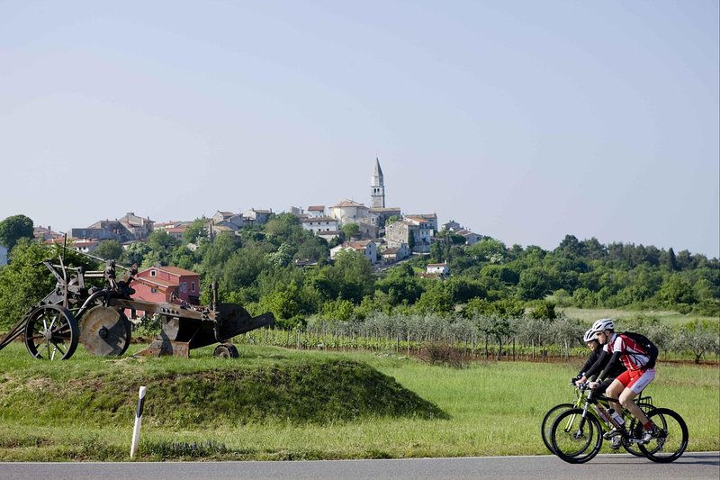Bicycle,Transportation,Outdoors,Nature,Countryside