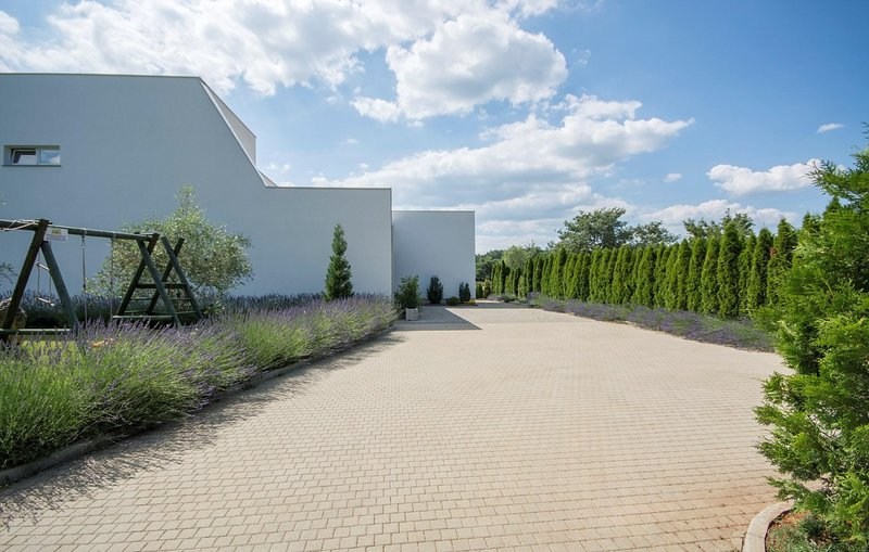 Path,Walkway,Grass,Vegetation,Flagstone