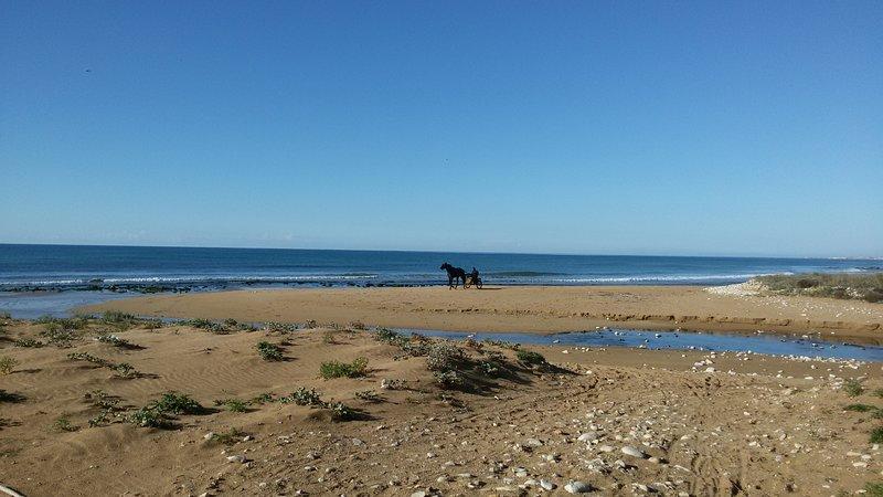 Appartamento a due passi dal mare – semesterbostad i Punta Secca