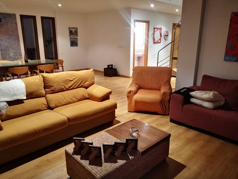 Amazing house with garden & Wifi, holiday rental in Orellan