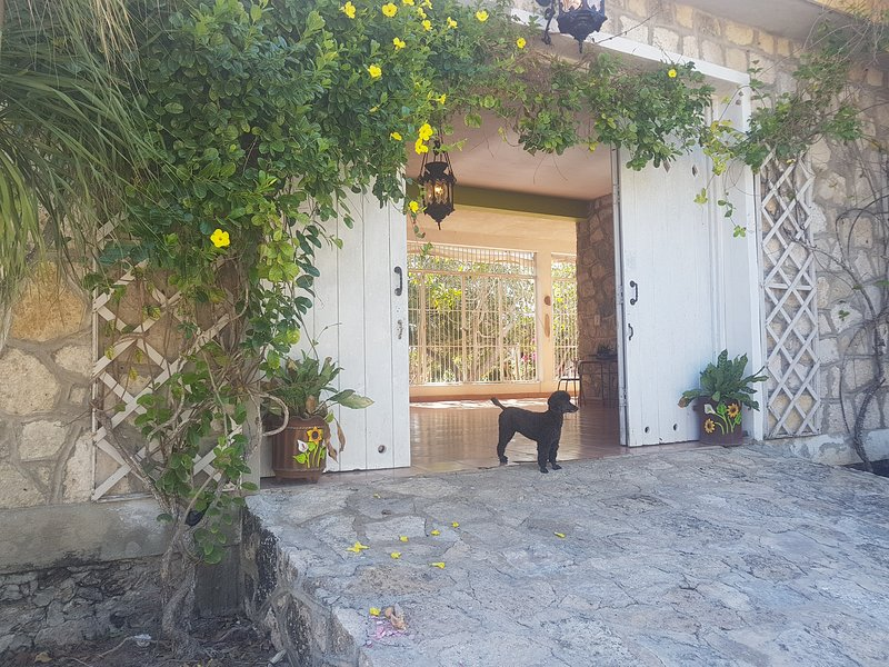 Looking for a few great guests... Casa Colibri Guest House, vacation rental in Celestun