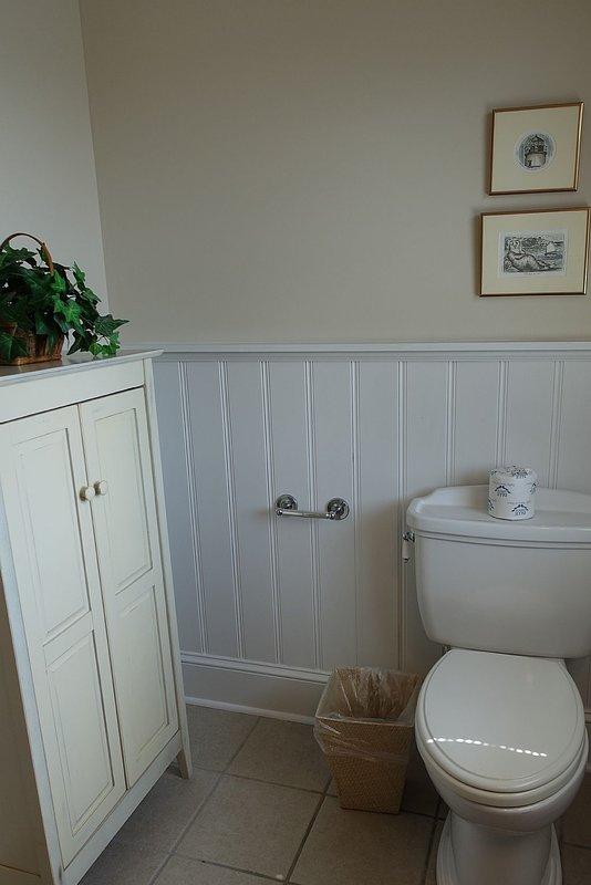 Toilet,Bathroom,Room,Indoors,Furniture