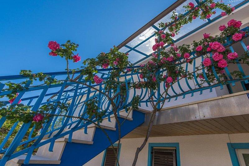 Banister,Handrail,Outdoors,Arbour,Garden