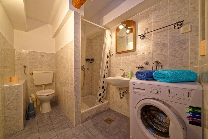 Innenaufnahme, WC, Zimmer, Badezimmer, Waschmaschine