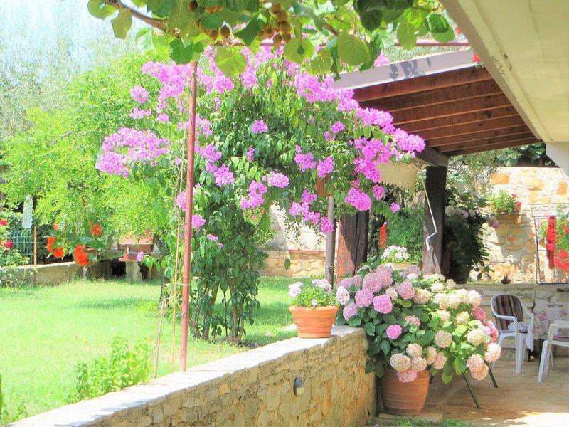 Outdoors,Garden,Arbour,Patio,Flower