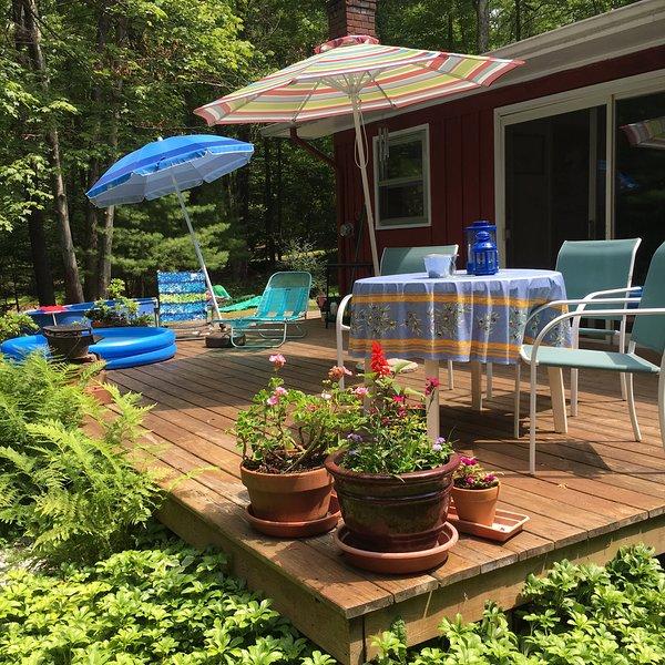 Charming Cottage Home, alquiler de vacaciones en Woodstock