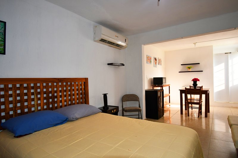 Private studio double bed, closet, private bathroom, air conditioning and microwave.