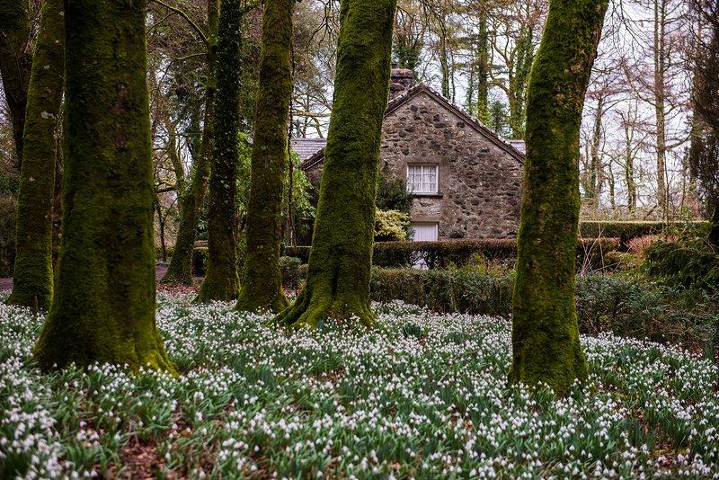 Glasfryn: Coach House, holiday rental in Llithfaen