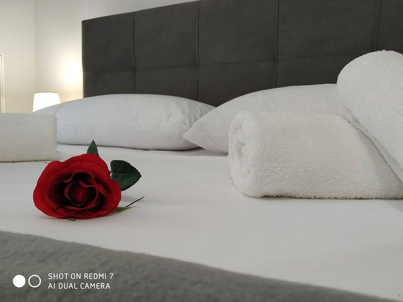 Athena 3 luxurys apartments in Athens, holiday rental in Agios Dimitrios