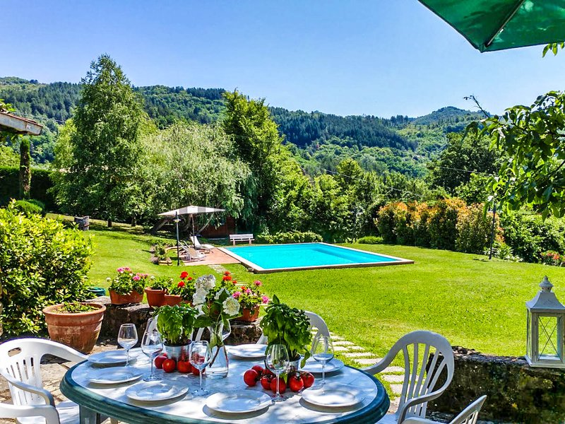 House with 12x6 private pool, own garden at 2,8km from Castiglione di Garfagnana, holiday rental in Villa Collemandina