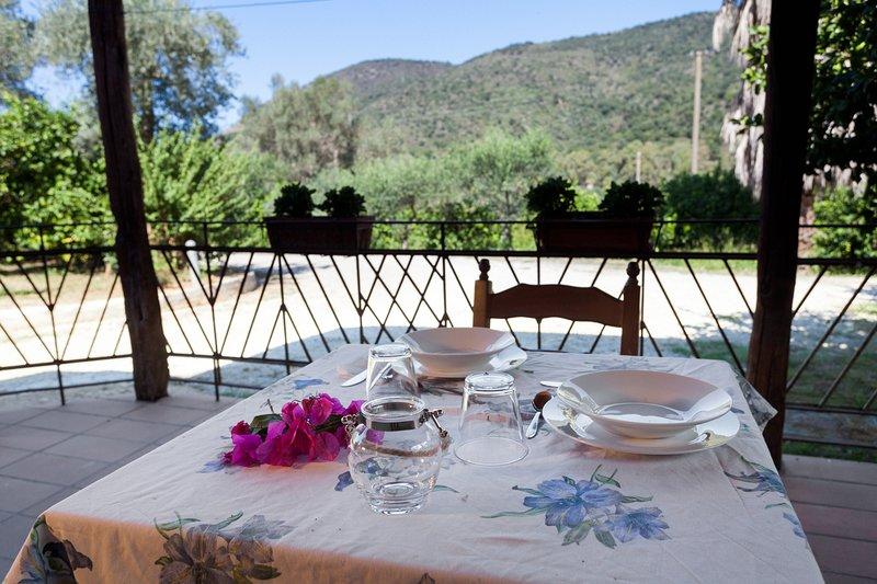 Agricontura 'Casa della Palma', holiday rental in San Salvatore di Fitalia