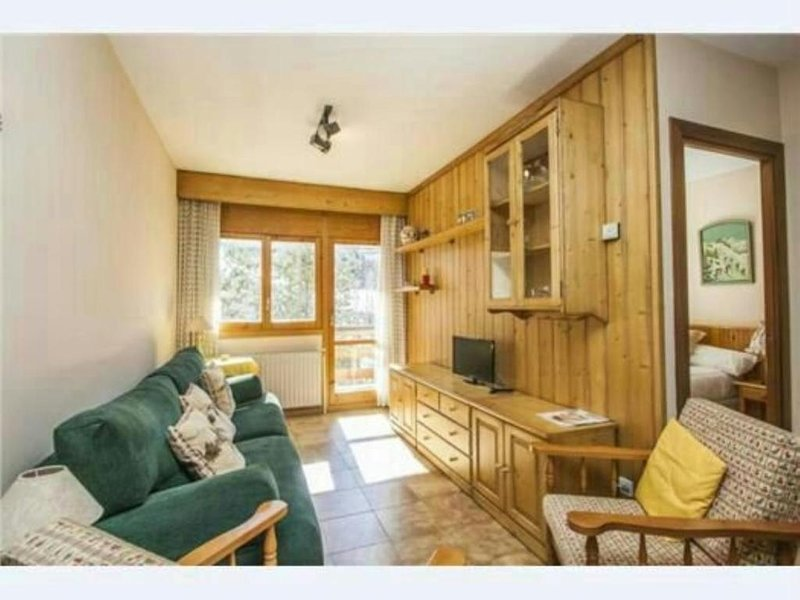 Apartment with mountain view, holiday rental in Incles