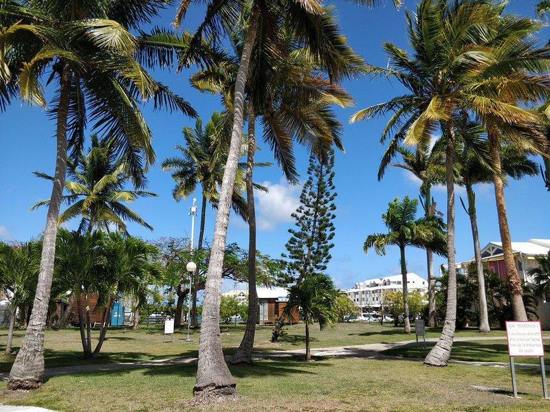 Tropisch park van de residentie