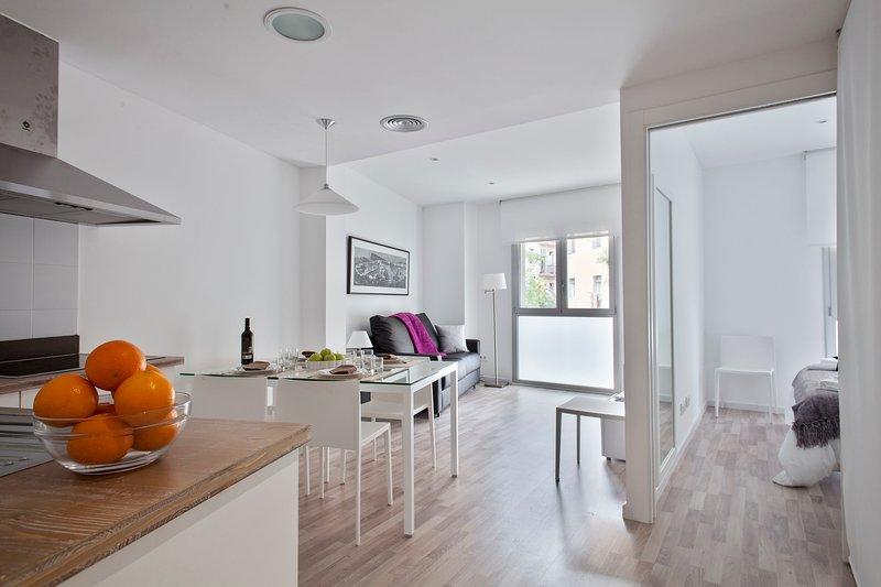 Cosy 2 bedroom next to the Magic Fountain, holiday rental in L'Hospitalet de Llobregat