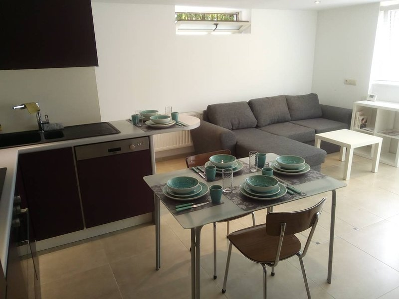 Amazing apt in Waterloo & Wifi, holiday rental in Walloon Brabant