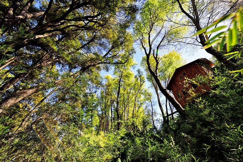 Refugio Ilaia - Termas de Chillán-Bike park y centro de ski- 6 personas, holiday rental in Chillan