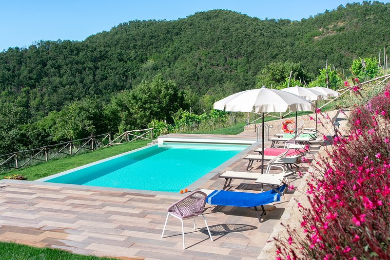 Lovely Apartment with wonderful swimming pool - Tre Case 3, vacation rental in Pieve di Chio