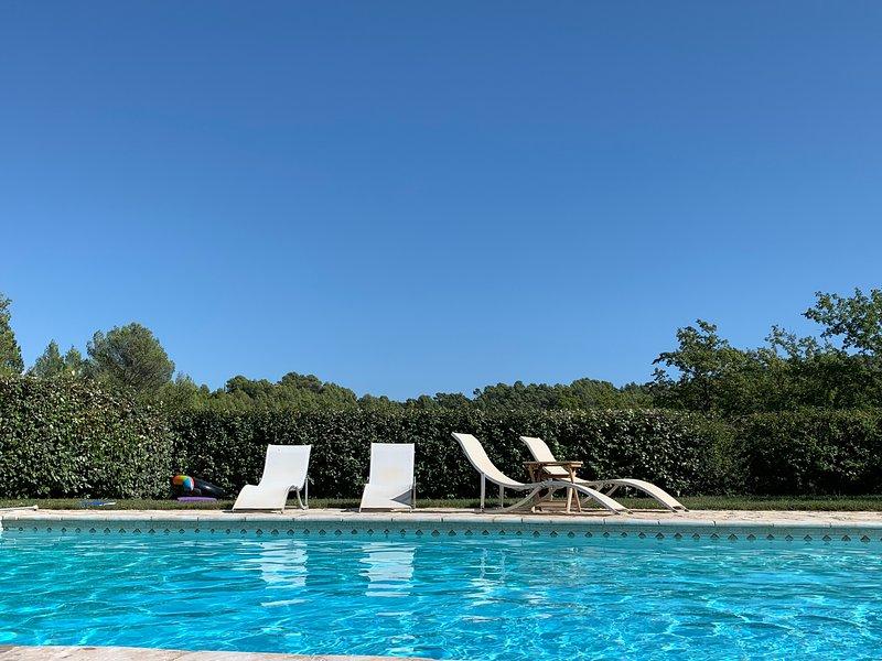 Mas Provencal  avec grande piscine dans Parc Régional du VERDON, holiday rental in La Verdiere