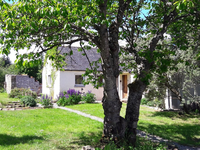Cosy Riverside Cottage with Large Enclosed Garden, vacation rental in Invergordon