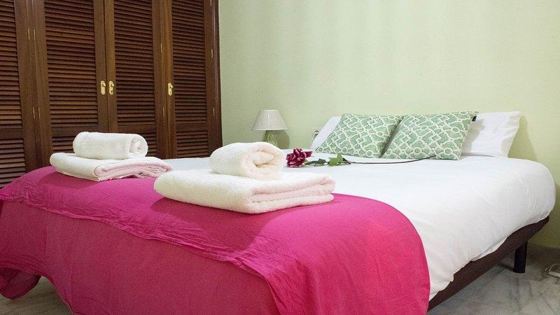 Apartment TRIANA Pelay - 2 Rooms, holiday rental in Olivares