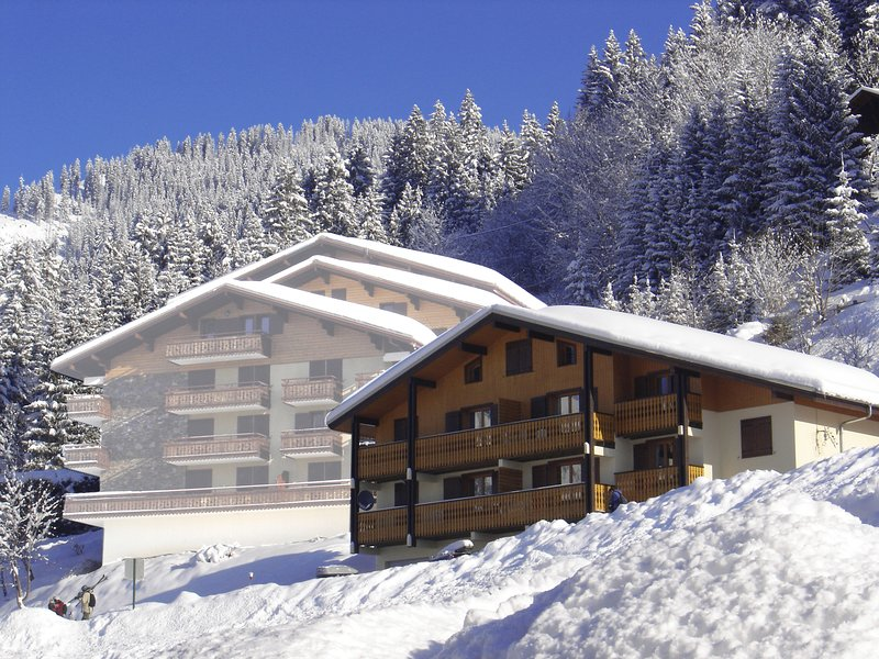 Apartment with mountain view, holiday rental in Torgon
