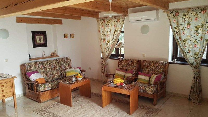 All'interno, camera, soggiorno, mobili, divano
