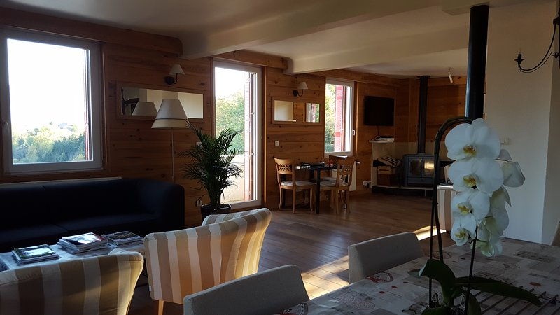 Apartment - 600 m from the slopes, vacation rental in La Roche-sur-Foron