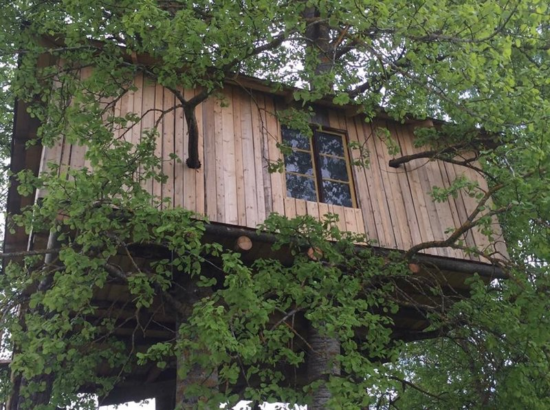 Treehouse Magpies Nest with forest and river views, holiday rental in By