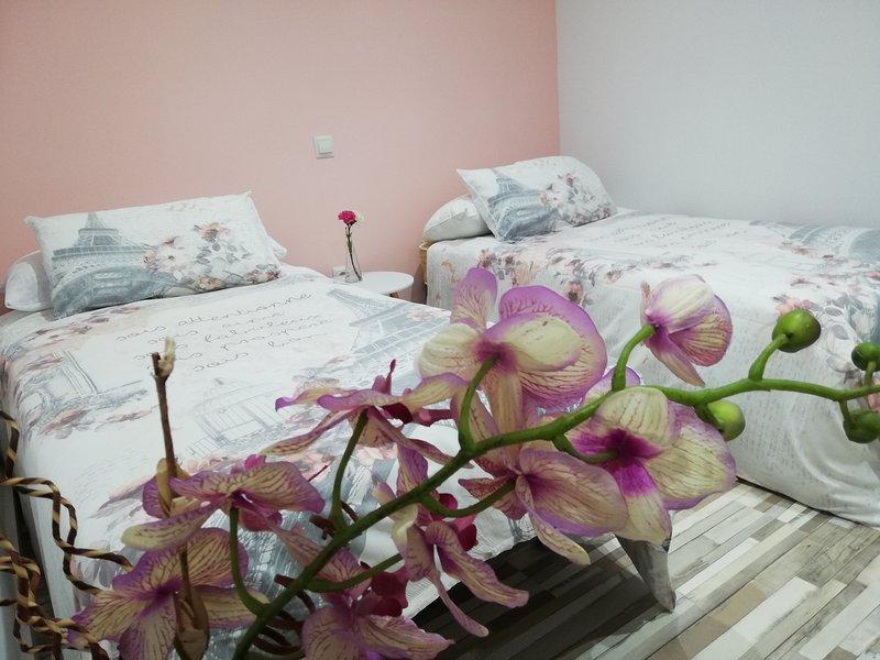 FANTÁSTICO PISO 'ACUARELA' JUNTO CASCO HISTÓRICO, holiday rental in La Cisterniga