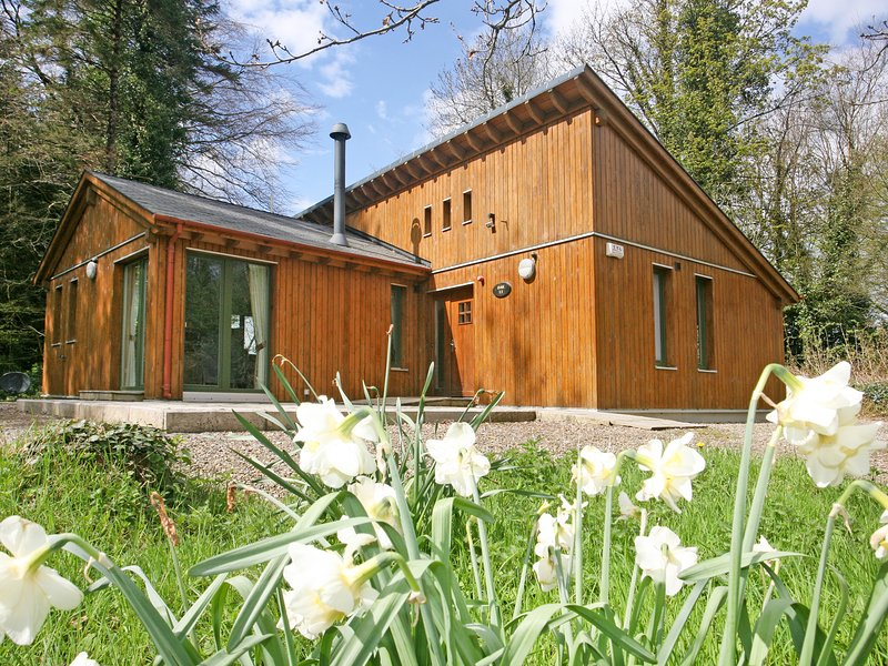 Ballyhoura Forest Luxury Homes, Kilfinane, vacation rental in Killavullen