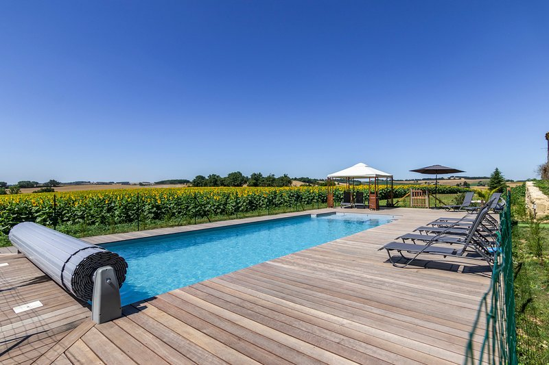 Lamothe-Goas Chateau Sleeps 20 with Pool - 5719868, vacation rental in Saint-Puy