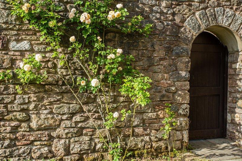 Porte sur jardin avant