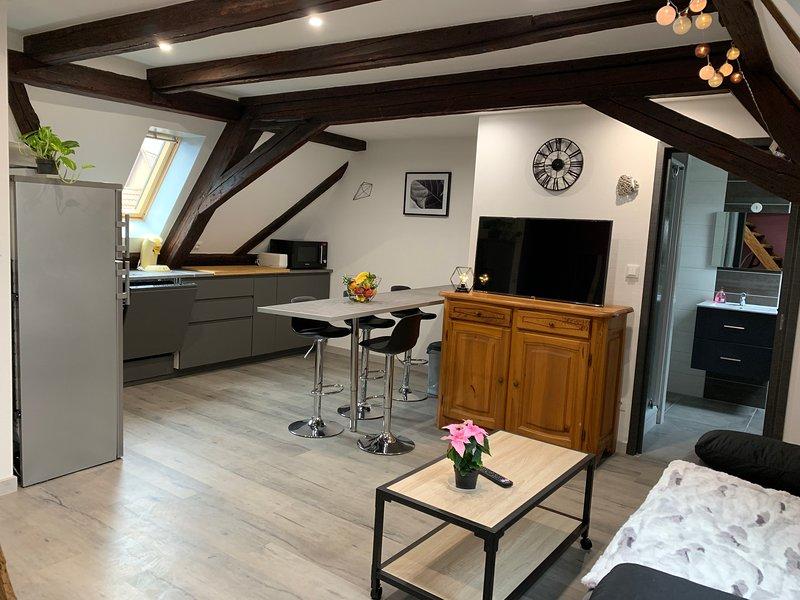 Le Gîte du Figuier Sélestat centre Alsace 4/6 personnes, holiday rental in Chatenois