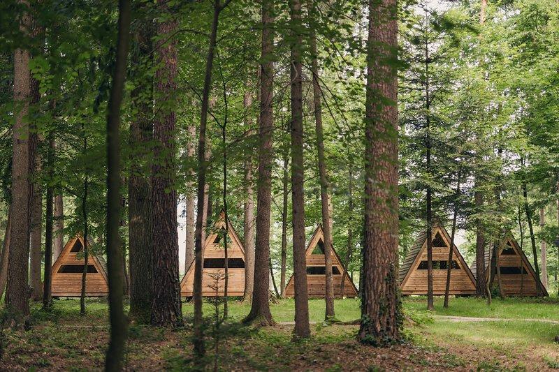 Nossas cabanas 'Cama na floresta'