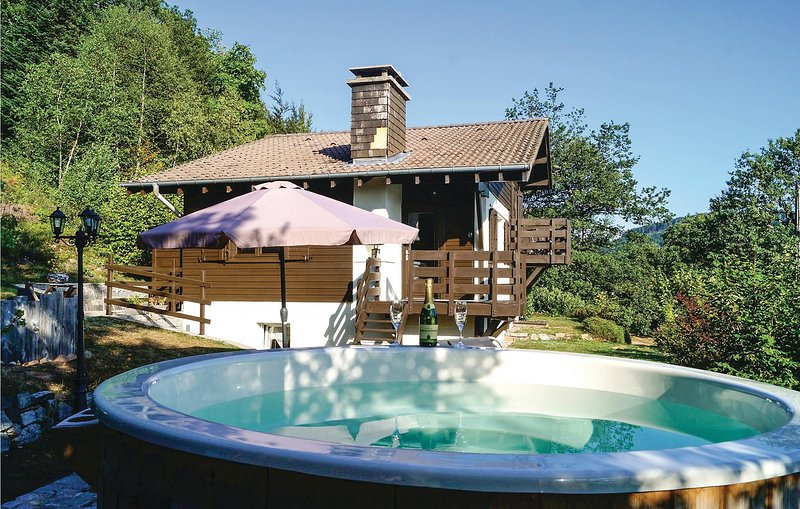 Awesome home in Basse le Rupt with Sauna, WiFi and 3 Bedrooms (FTV018), alquiler vacacional en Basse-sur-le-Rupt