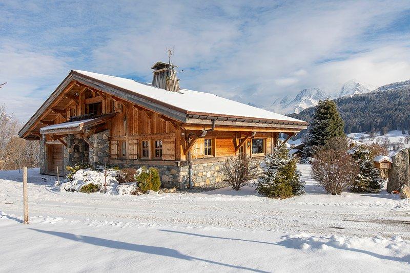 Chalet vue Mont-Blanc (8 personnes), holiday rental in Demi-Quartier